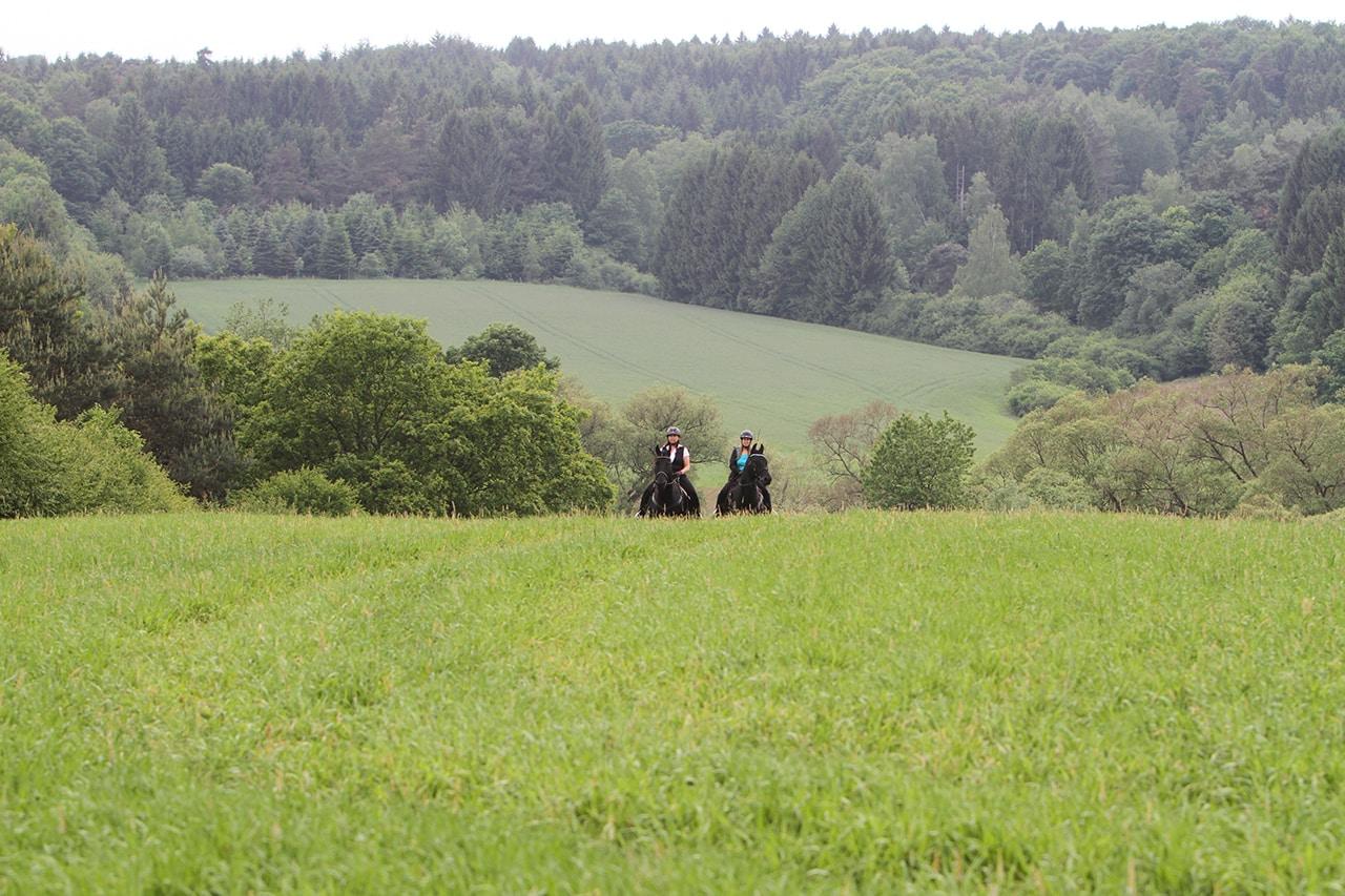 Saarlandtraum Weihermühle Urlaub Landschaft